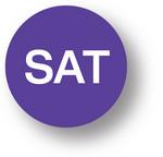 DAY - Saturday (Purple) 1.5